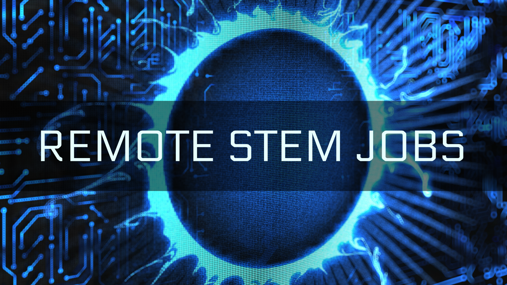 remote STEM jobs