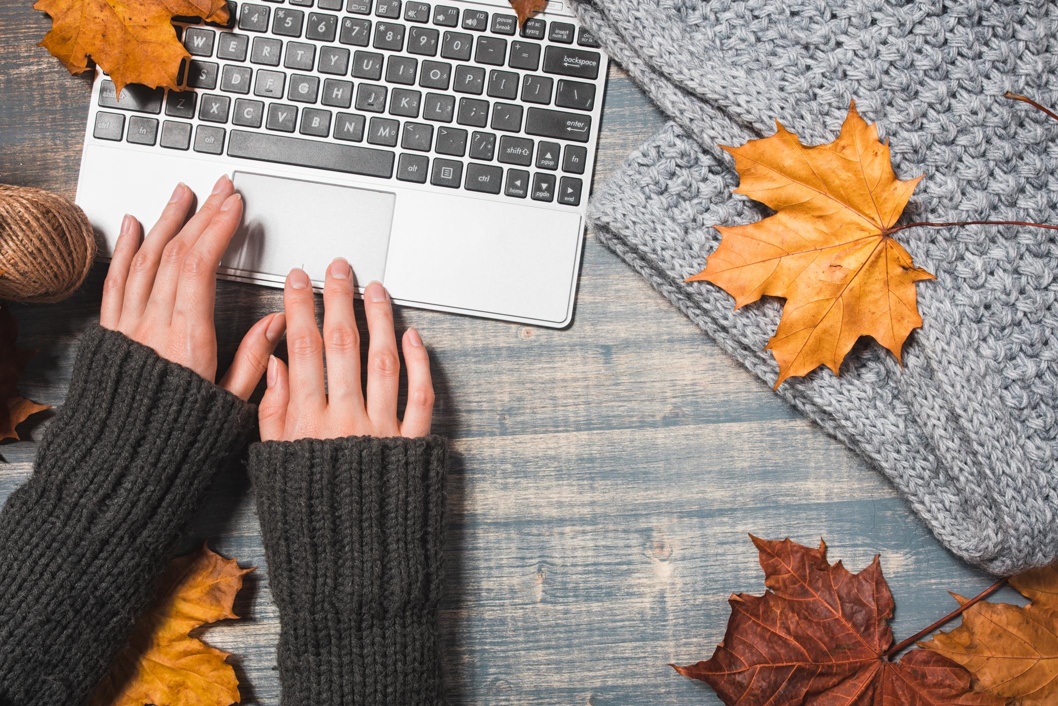 November remote jobs