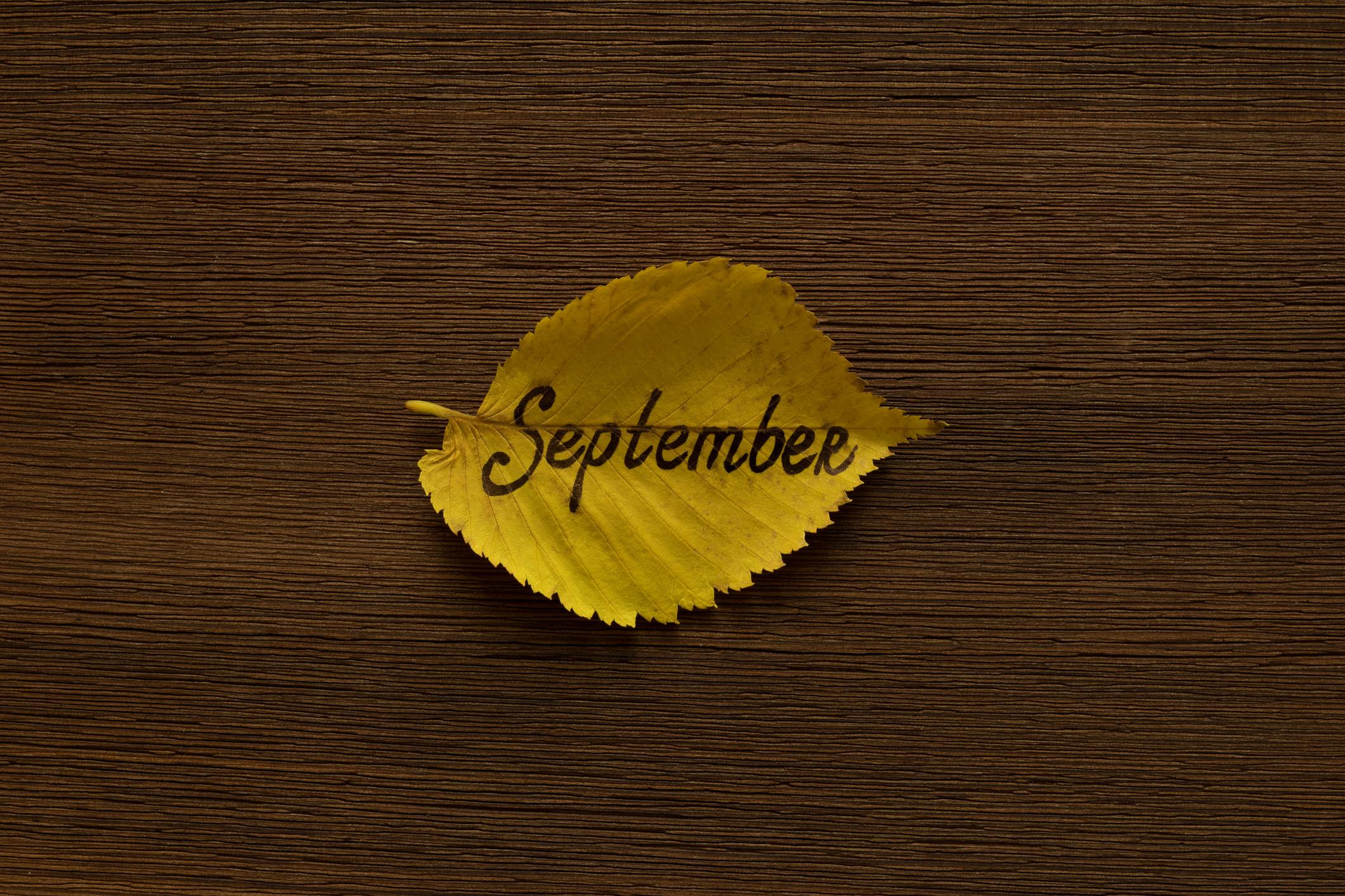 12 September Remote Jobs for Nurses, CSRs, Teachers & Writers!