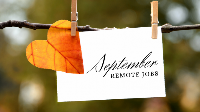 Virtual Vocations - New September Remote Jobs