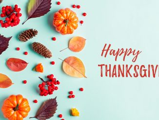 Happy Thanksgiving - Thanksgiving remote jobs - Virtual Vocations telecommute and flexible jobs
