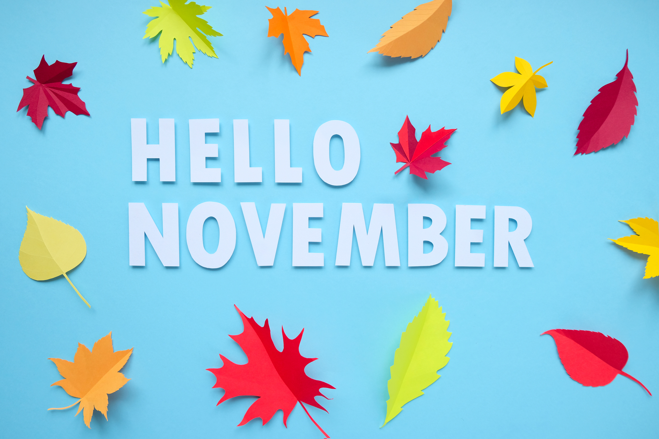 Hello November - November virtual jobs - Virtual Vocations telecommute and remote jobs
