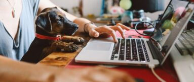 Making a career transition to work remotely