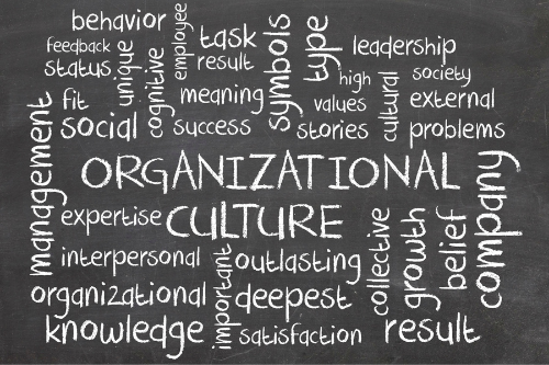 Company culture is a set of value and actions that enable an organization to function at the highest level.